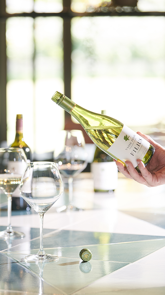 Picture of Vasse Felix 'Filius' Chardonnay 2019/20, Margaret River