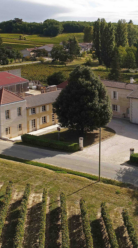 Picture of Chateau Tour Bayard Montagne 2016