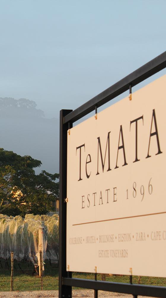Picture of Te Mata Estate 'Awatea' Cabernets/Merlot 2017, Hawke's Bay