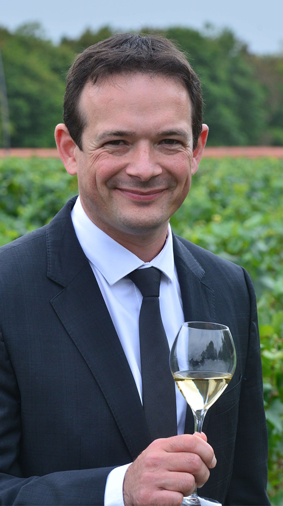 Picture of Pommery 'Brut Royal' Champagne