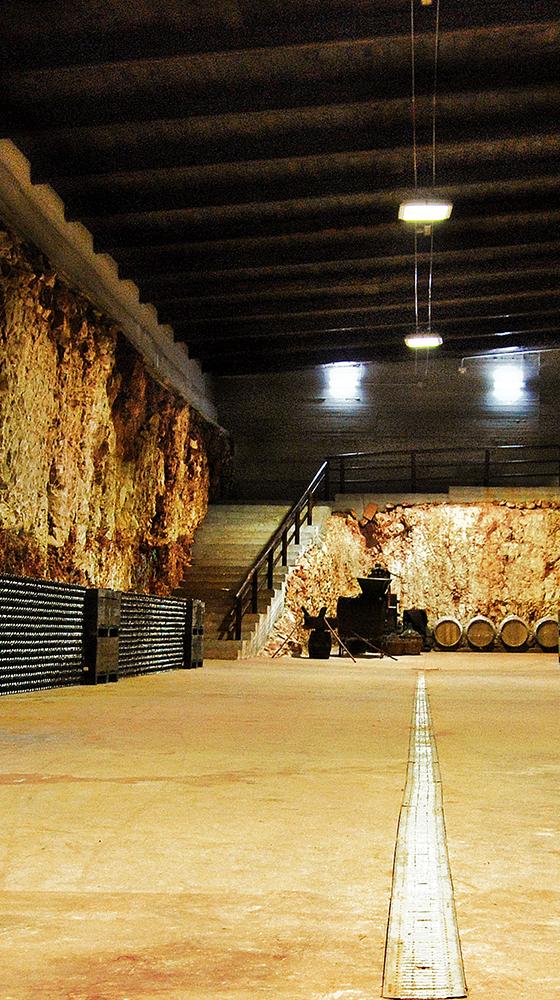 Picture of Polvanera Organic Primitivo 2019, Marchesana