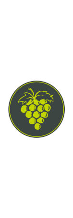 Cono Sur Single Vineyard Chardonnay 2018
