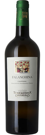 Picture of Falanghina 2019 Terredora